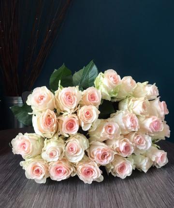 Букет из 25 светло-розовых эквадорских роз
