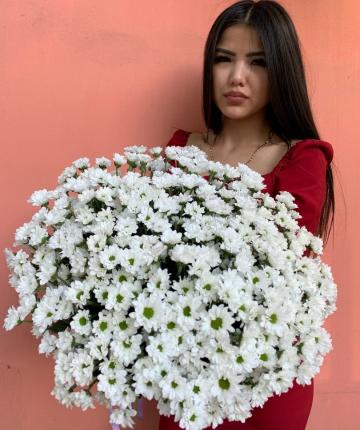 Букет из 25 белых кустовых хризантем
