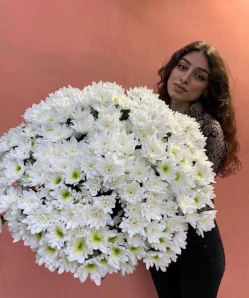 Букет из 35 белоснежных кустовых хризантем