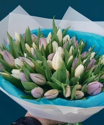 Букет из светло-сиреневых голландских тюльпанов - 51 шт.
