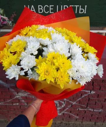 Букет из желтых и белых хризантем - 17 шт