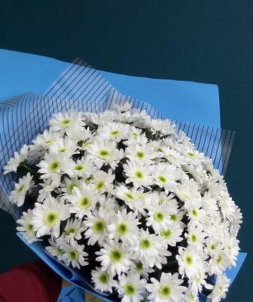 Букетик из 17 белоснежных кустовых хризантем