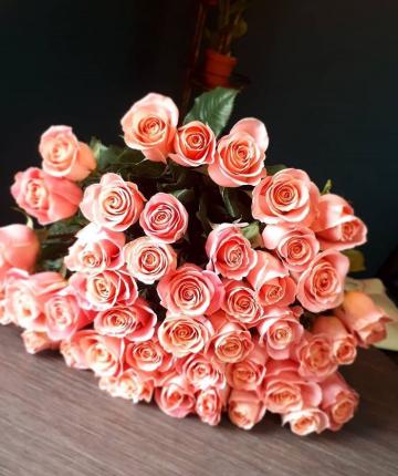 Коралловые эквадорские розы поштучно - 70 см