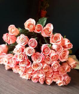 Коралловые эквадорские розы поштучно - 70 см.